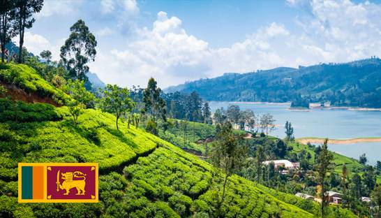 Sri Lanka's tourism strategy should focus on consistency in branding