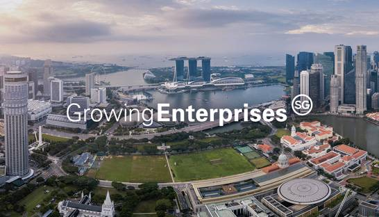 McKinsey and PwC support latest batch of scale-ups in Singapore