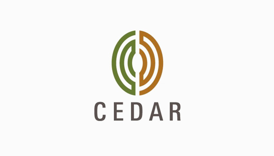 Consulting firm in Asia: Cedar Management Consulting